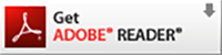 Download Offical Adobe Software to get full interactive functions